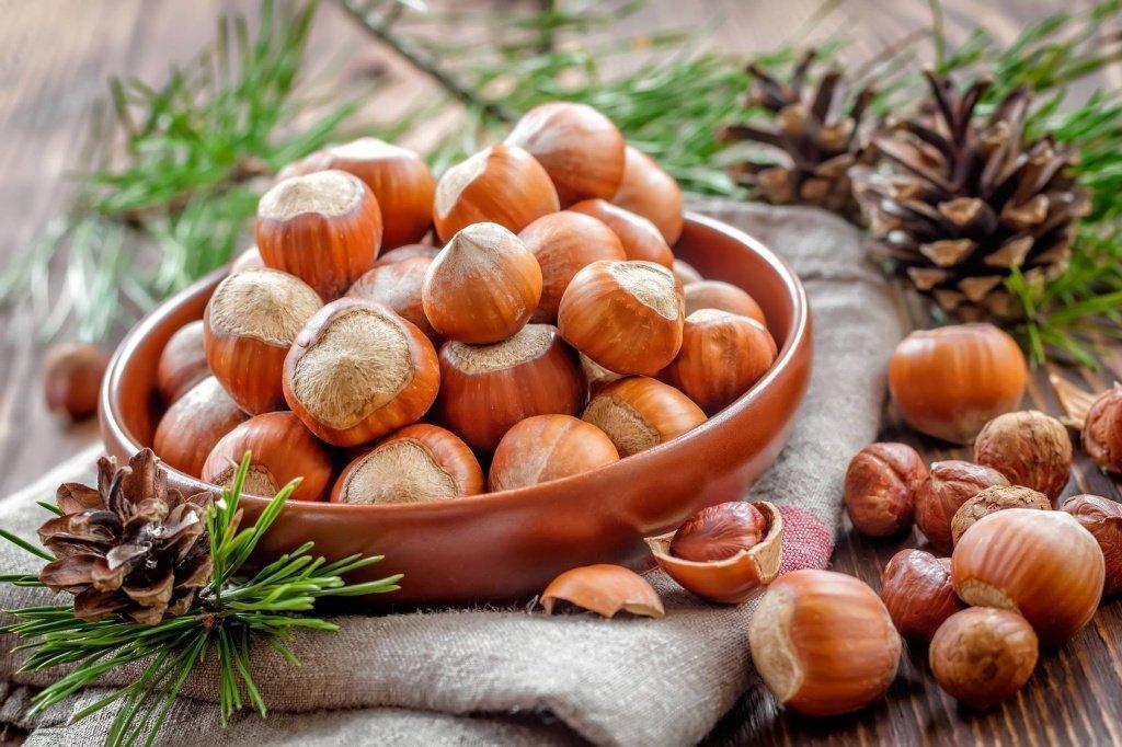 лесной орех в народной медицине