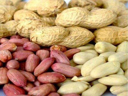 различные виды арахиса