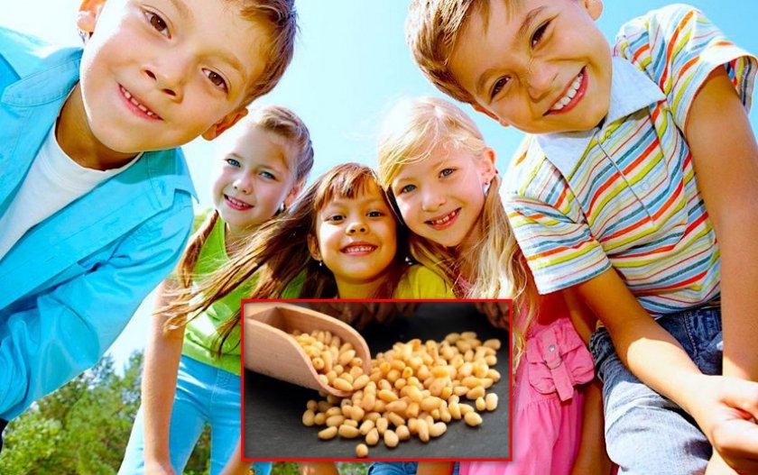 Дети и кедровые орехи